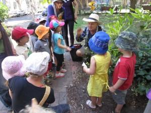 Kids harvesting tucker from road gardens