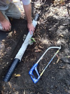 One length of leaky drain runs beside path edge and directs rain water to either side and also to drain at the T-section