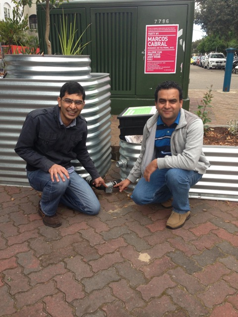 Anir and Raz pointing to Ysense temperature logger on Bondi Beach ecoPOPs