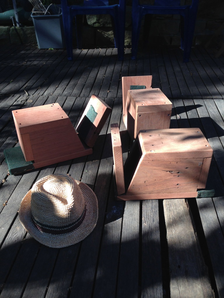 Microbat nest boxes