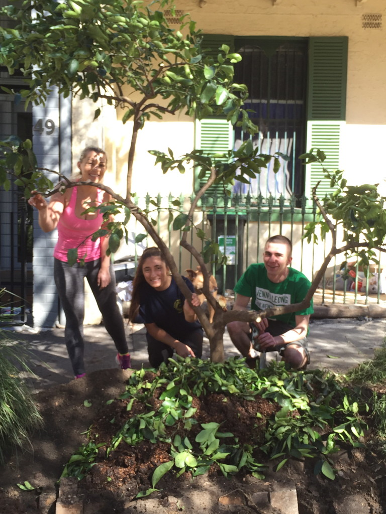 Chippo road gardeners Bianca, Serena and Eammon after transplanting the Tahitian Lime on Saturday 8 May 15